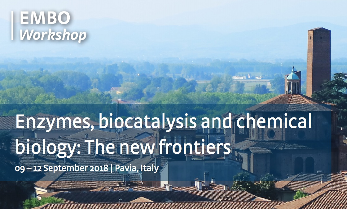 EMBO Workshop a Pavia – settembre 2018. Enzymes, biocatalysis and chemical biology: The new frontiers