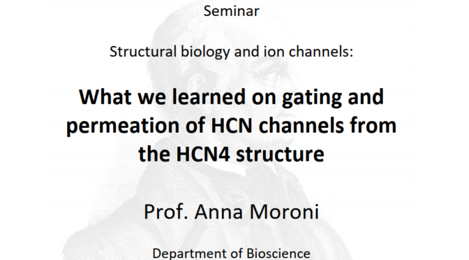 What we learned on gating and permeation of HCN channels from the HCN4 structure – Prof. Anna Moroni